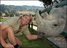 Steve Irwin's zoo is one of the attractions at Noosa.