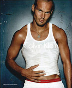 Freddie Ljungberg is giving up Calvin Klein to be more statesmanlike as Sweden captain and Arsenal's longest serving player.