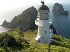 There will be open days for the public to see the lighthouse project.