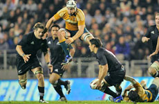 Daniel Carter looks to pass to Richie McCaw (left), while Australian No 8 Stephen Hoiles leaps high to stop the move at Eden Park on Saturday. Photo / Brett Phibbs.