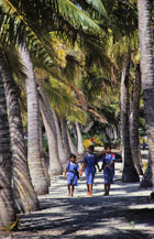 Children meander home through a palm-fringed lane near Saipipi village.