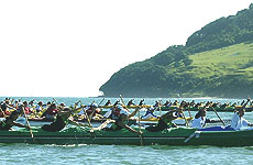 Tauranga's outrigger canoe race is one of the largest in the country. Photo / Bay of Plenty Times