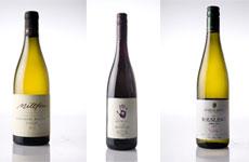 L-R: Millton Chenin Blanc, Seresin Pinot Noir, Felton Road Riesling. Photos/ Babiche Martens