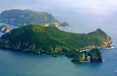 Tawhiti Rahi Island (rear) in the Poor Knights group wa