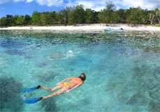 After a taxing day lying on the beach, try a spot of snorkelling in Vanuatu's clear waters. Photo / Supplied