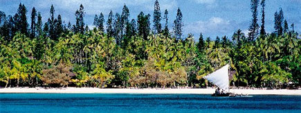 Just 14km wide and 18km long, the Isle of Pines is covered with soaring araucaria pines and white beaches .