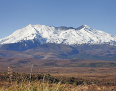 Mt Ruapehu erupted nine months ago. File photo / Sarah Ivey