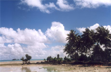 Pacific Islands such as Kiribati face an uncertain future due to rising sea levels and climate change and community leaders are urging the governments of New Zealand and Australia to take action. Photo / Supplied