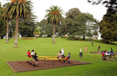 Children playing in Jellicoe Park. Photo / Herald on Sunday