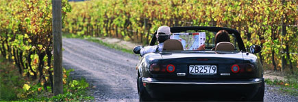 Driving through Wairarapa's vineyards. Photo / Supplied