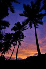 A cruise is a great way to experience colourful Rarotonga. Photo / Richard Robinson