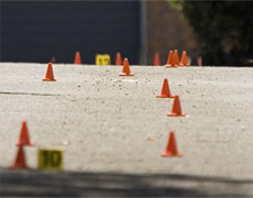 New Zealand has a shameful record of toddlers being run over in driveways. File photo / Richard Robinson