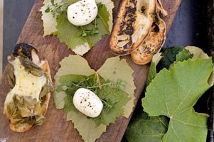 Fresh mozzarella wrapped in vine leaves. Photo / Babiche Martens