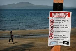North Shore, Auckland City and Hauraki Gulf beaches have been affected. Photo / Greg Bowker