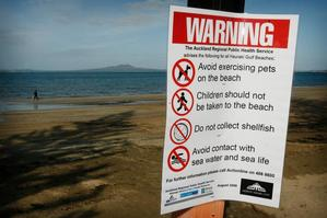 Health warnings are likely to stay on North Shore beaches at least until tomorrow. Photo / Greg Bowker
