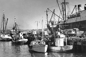 Fishing has now become uneconomical for locals. Photo / Weekly News