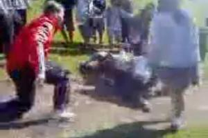 The film shows the teacher being knocked down during the schoolgirls' brawl.