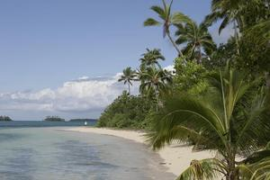 Enjoy a slower pace of life in Tonga. Photo / Supplied