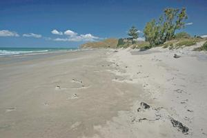 Critics of the bylaw say it will scare tourists away. Photo / Hawke's Bay Today