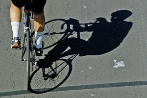 A cycle action group wants more concessions but some are criticising bike riders' dangerous attitudes. Photo / Greg Bowker