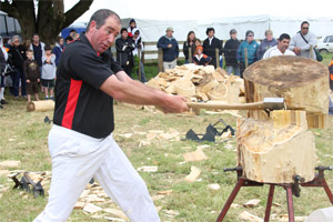 Graeme McDonnell of Puhoi shows off his prowess during the woodchopping section of the P&I Show. Photo / Bay Report