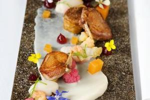 Quail with cauliflower, pinenut and blood orange entree. Photo / Babiche Martens