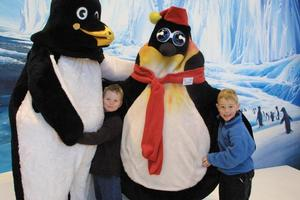 Christchurch's International Antarctic Centre. Photo / Christchurch Star