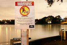 A sign at Takapuna Beach warns owners to keep their dogs off the beach until further notice. Photo / Greg Bowker