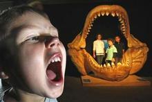Joel Ashwell, 4 (front), and Bella Kingi, 11, Stephen Kingi, 8 and Joel Kingi, 8, get different views of the Megalodon. Photo / Steven McNicholl