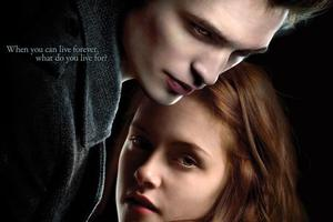 The DVD cover for the movie Twilight.