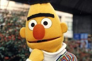 Bert from Sesame Street. Photo / Supplied