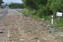 Blood, fat and discarded pieces of butchered animals were spread 15km on SH2. Photo / Dannevirke News