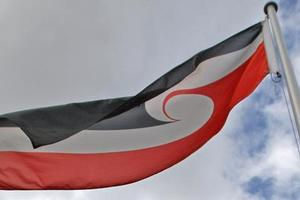 Maori leaders are divided over whether the Tino Rangatiratanga will be officially flown at Waitangi. Photo / Rotorua Daily Post
