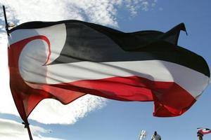 The Tino Rangatiratanga flag is hoisted on One Tree Hill on Waitangi Day, 2007. Photo / Brett Phibbs