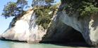 View: Cathedral Cove: Unspoiled paradise