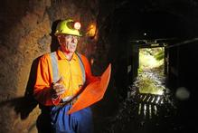 Heritage Gold director Peter Atkinson near the entrance to the historic Talisman gold mine, on DoC land in the Karangahake Gorge. Photo / Richard Robinson