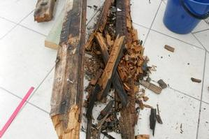 Most owners have to deal with flaws found in homes they've just bought. Photo / Bay of Plenty Times