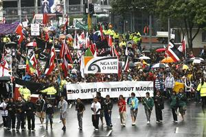 Protests over dropping Maori representation on the Auckland Council also fell on deaf ears. Photo / Steven McNicholl
