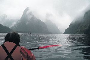 Doubtful Sound's gently sloping peaks are shrouded in mist. Photo / Brett Atkinson