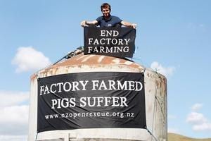 Photography student John Darroch gets his point across while chained to a Cambridge pig farm's silo. Photo / Christine Cornege