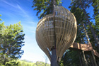 The Yellow Treehouse near Warkworth was among NZIA 2010 award winners. Photo / Supplied