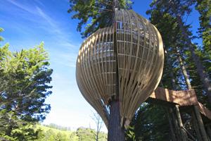 The Yellow Treehouse near Warkworth was among NZIA 2010 award winners. Photo / Supplied