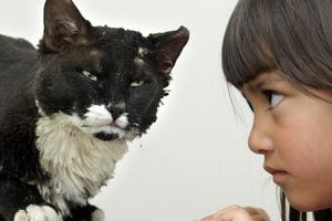 Sophie Andrews with Skinny Boy at the vet centre after he was burnt. Photo / Rotorua Daily Post