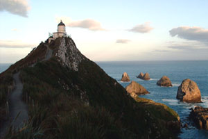 Peer down at elephant seals and sea lions at the Nugget Point lighthouse. Photo / Supplied