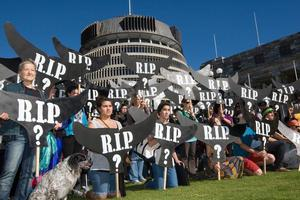 Room for compromise: Greenpeace supporters protested against commercial whaling at Parliament in Wellington. Photo / Mark Mitchell