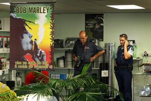 GreenDay Hydroponics in Mt Maunganui was one of 35 firms raided in a swoop on cannabis cultivation. Photo / Alan Gibson
