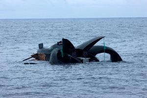 The Ady Gil sinks after its collision with the Shonan Maru 2. Photo / Sea Shepherd