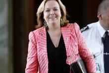 Judith Collins said the bill upheld a government pledge to remove eligibility for parole for the worst repeat violent offenders. Photo / Mark Mitchell