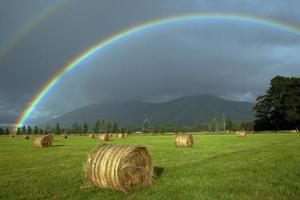 There's a pot of gold at the end of the KiwiSaver rainbow. Photo / Simon Baker
