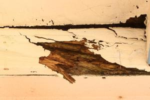The problem with leaky home repairs is the risk. Photo / Alan Gibson